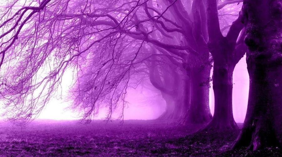 Что означает фиолетовый цвет ауры