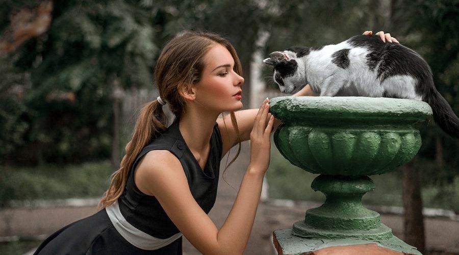 кошка девушка фонтан смотрит