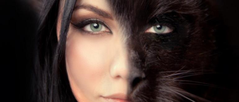 Если женщине приснилась кошка