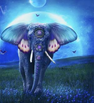 Тотем слон