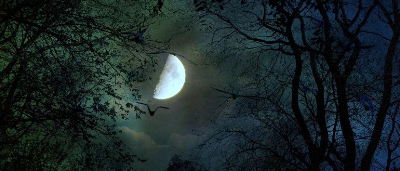 Камни планеты Луна